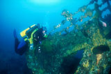 Scuba diver on the Coogee wreck, Victoria, Australia